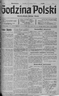 Godzina Polski : dziennik polityczny, społeczny i literacki 17 sierpień 1916 nr 228