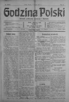 Godzina Polski : dziennik polityczny, społeczny i literacki 17 lipiec 1917 nr 193