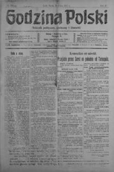 Godzina Polski : dziennik polityczny, społeczny i literacki 25 lipiec 1917 nr 201