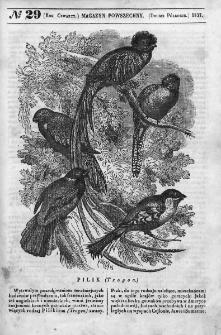 Magazyn Powszechny : dziennik użytecznych wiadomości. 1837, nr 29